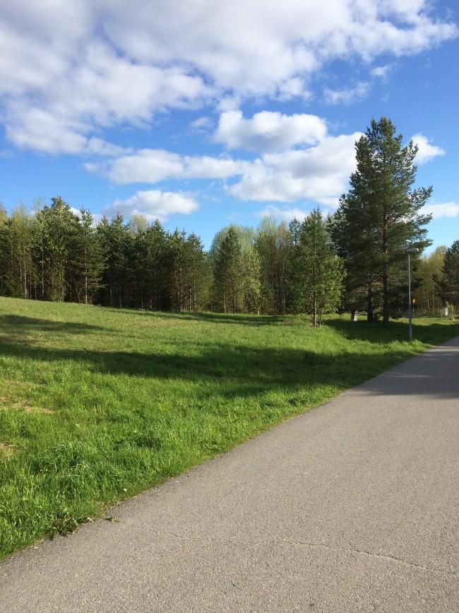 Vid Timmervägen i Torvalla