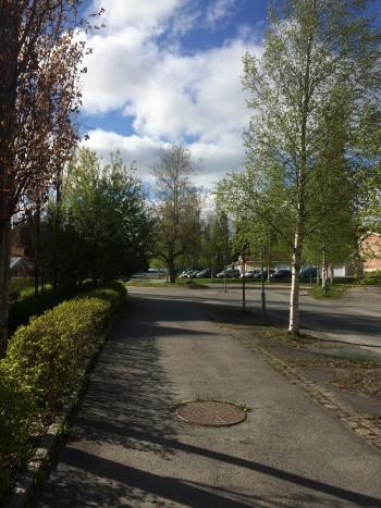 Torvalla